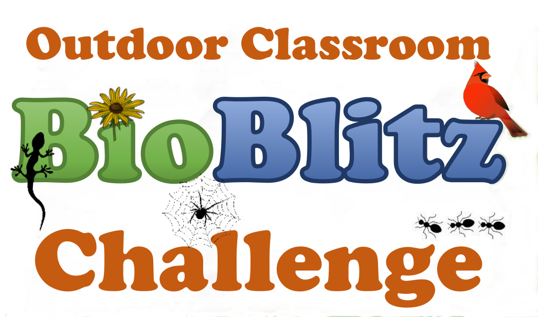 Outdoor Alabama BioBlitz Challenge