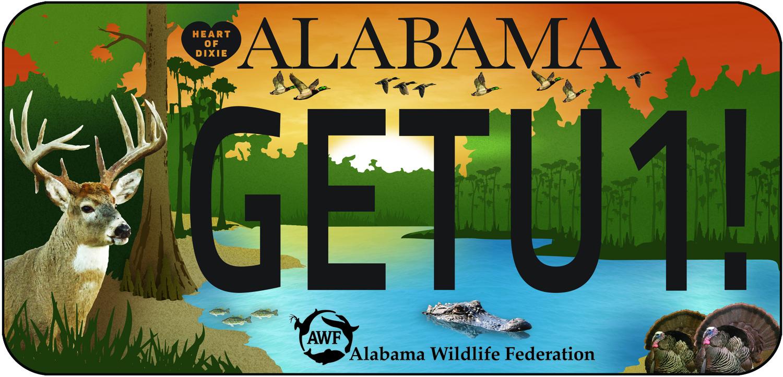 Alabama Car Tags >> Wildlife Tag Awf